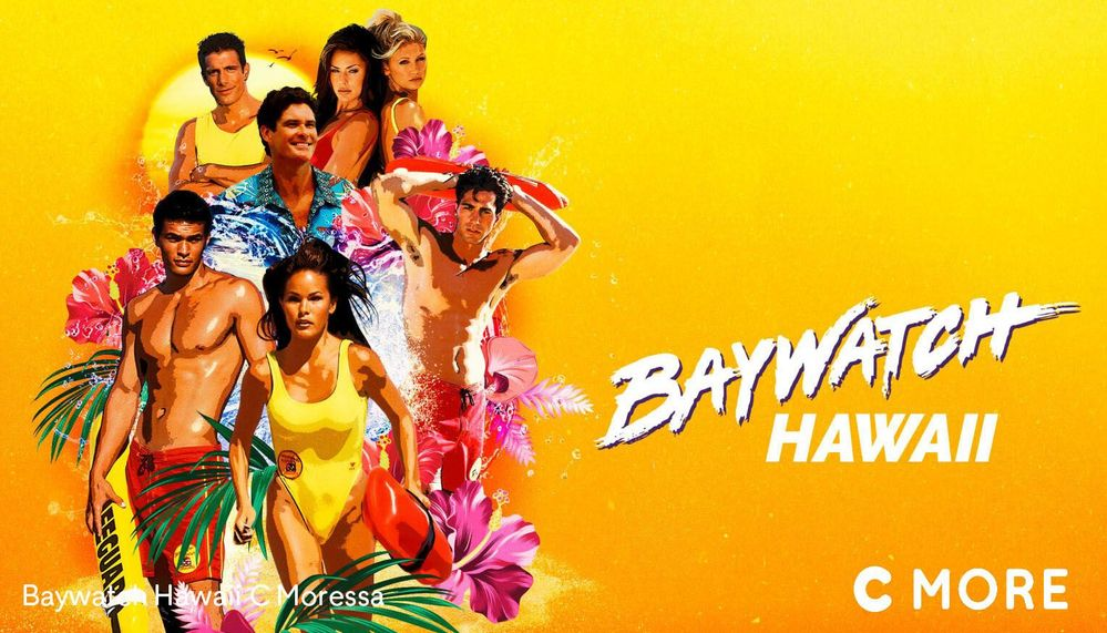Baywatch Hawaii_copy2.jpg